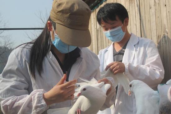 动物园动物健康大体检