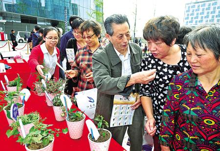 """安居社区""""百草园""""中药爱好者王宁君(右三)正在江东区社区教育现场成果展上向市民介绍金钱草的疗效。"""