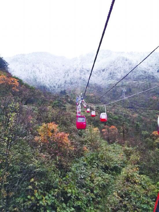西岭雪山缤纷的红叶与雪景对比鲜明 网友朱凌瑶change供图