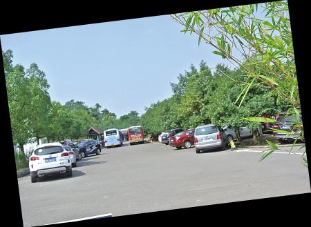 许多私家车只好停在公交站内。(冯小平 摄)