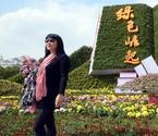 南昌百万盆花飘香红谷滩
