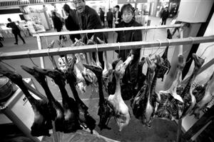 图为市民在选购肉制品 记者 张培坚 摄