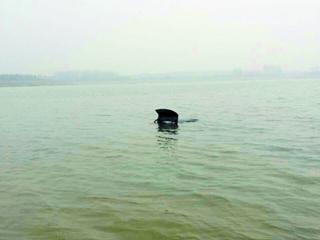 车在龙湖湖心被人发现。