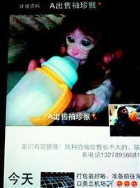 受害人小王出示的卖家微信朋友圈。