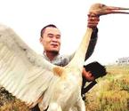 网友炫耀猎杀白鹤豹猫