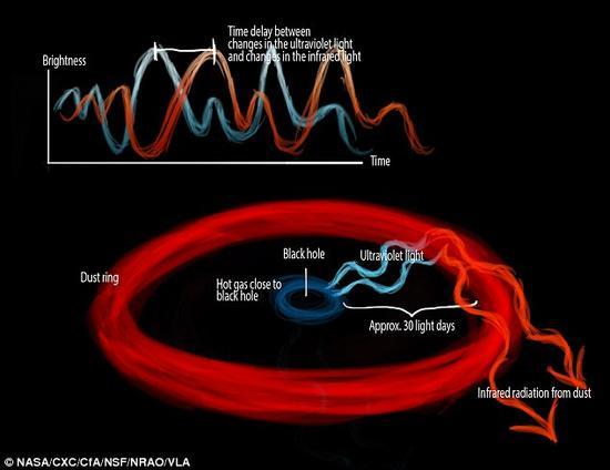 当气体物质向着黑洞下落,在此过程中会被加热并发出紫外波段附设,并造成周遭尘埃云的升温。利用地球上的望远镜,科学家们测量了来自黑洞附近以及尘埃云附近光线抵达的时间差,结果为30天。根据这一数值便可以换算出其真实距离值。