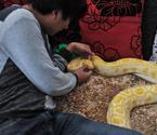少年与25条蛇同居10年