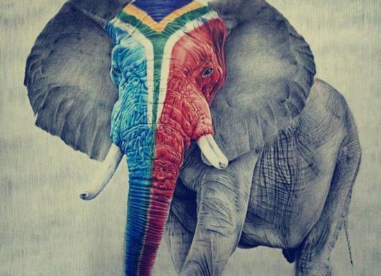 《孤寂的象》
