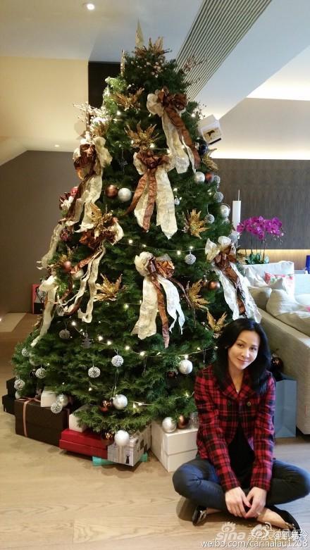 刘嘉玲和巨型圣诞树合影