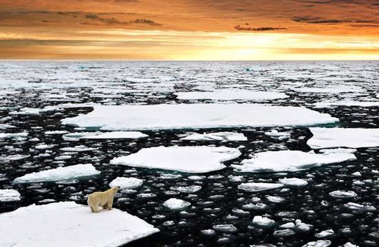 北极海冰面积萎缩