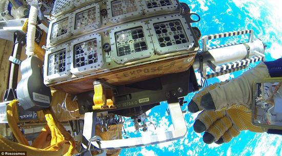 国际空间站暴露2号实验有46种不同的细菌、真菌和节肢动物。