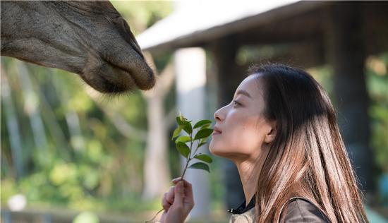 倪妮深情对望长颈鹿