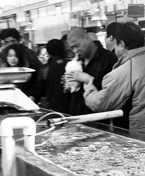 男子醉酒后欲活吞王八(图片来自网络)