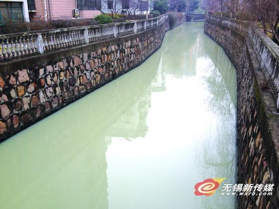 """小区景观河 一夜变成""""牛奶河"""""""