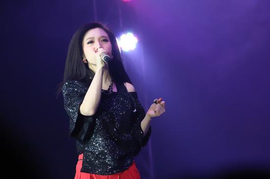 胡杨林献唱恩施迎新演唱会 将发新唱片
