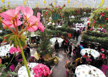 鄞州天宫庄园现省内最大生态鲜花餐厅