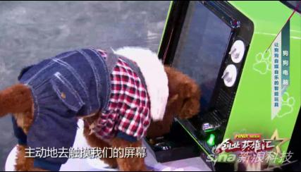 全球第一台给狗用的电脑登央视舞台,炫酷产品获资本青睐。