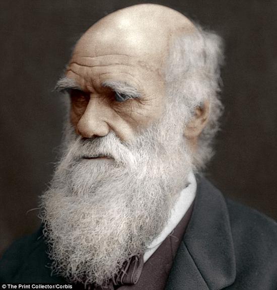 """上图是英国博物学家查尔斯·达尔文一幅作于1878年的肖像。达尔文的博物学家生涯始于搭乘皇家海军""""贝格尔""""号对南美海域进行的考察,考察总共耗时六年。他是进化论的创立者并对生物学做出了的杰出贡献,因此被载入史册。"""
