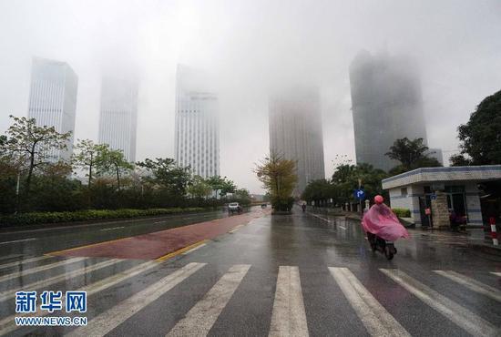 新华社记者 周华 摄