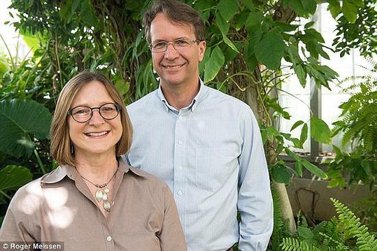 科学家海蒂-阿珀尔和莱克斯-科克罗夫。在此前进行的一项研究中,他们发现植物能够辨识附近的声响,例如进食的声音,而后对所处环境中的各种威胁做出响应。