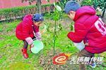 五星社区小朋友为小树苗浇水培土。