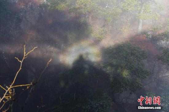3月21日上午8时许,安徽黄山出现佛光景象。
