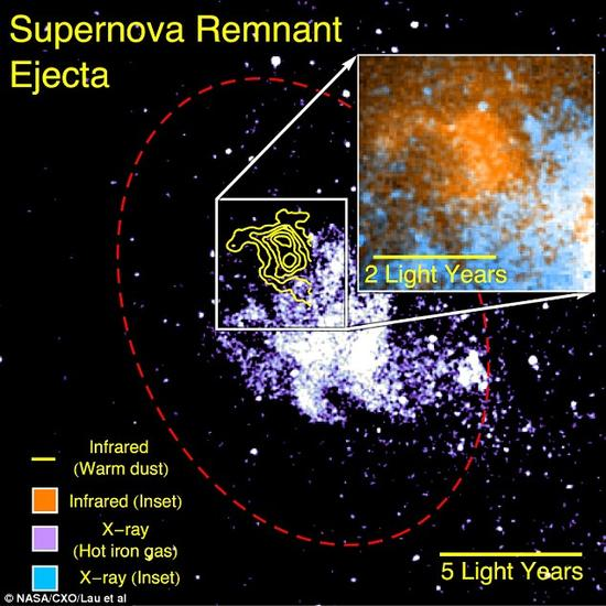 """美国天文学家表示超新星是行星形成的""""缺失一环""""。观测过程中,他们发现一个巨云,能够证明超新星可以产生数量惊人的物质,足以形成数千颗行星。纽约康奈尔大学的莱安-劳表示:""""我们的观测结果显示一颗在1万年前爆炸的超新星产生一个独特的云,云内的尘埃足以形成7000个地球。"""""""