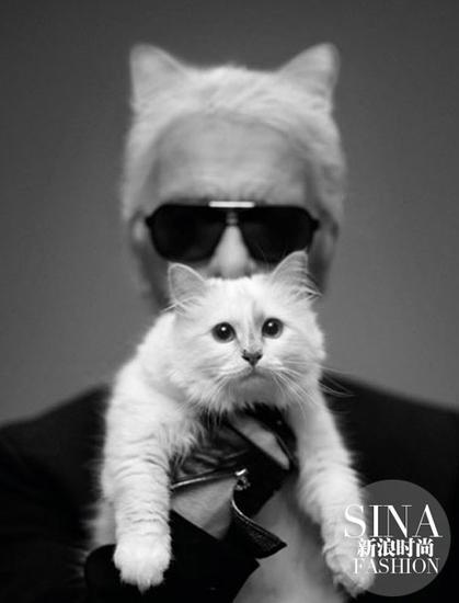 老佛爷坦白没想到自己会爱上一只猫
