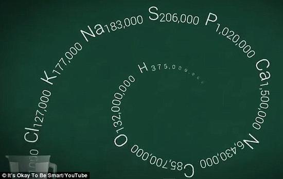 生物学家乔・汉森计算出来的人体化学式。