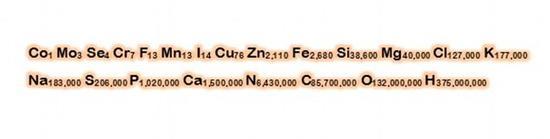 """乔・汉森所计算出来的""""人体分子式"""",字母为化学元素,后面的数字为原子数。"""