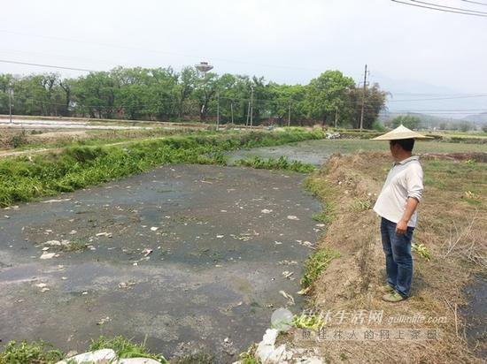 龙水镇屠宰场附近,一位村民无奈地看着被污染的农田