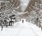 内蒙古四月雪