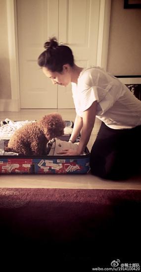 章子怡和愛犬玩耍賣萌 打扮慵懶似少女
