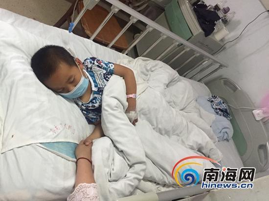 小云在病床上睡着了,紧握着姑姑的手。(南海网记者 刘麦 摄)