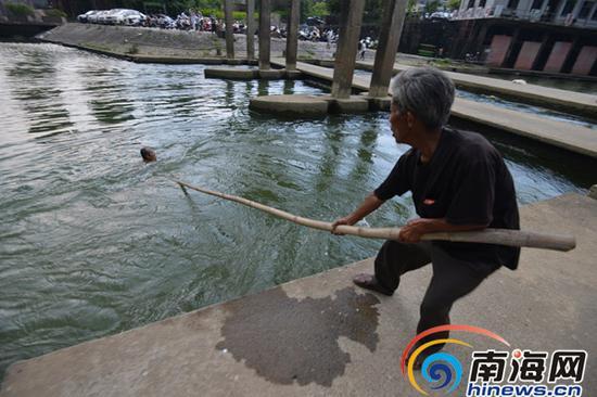 5月4日下午,记者采访魏文贤时,恰巧有人遇险,老人拿着竹杆救人。