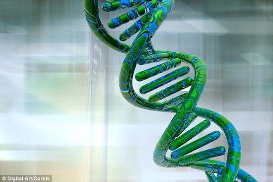 DNA,也叫脱氧核糖核酸,是人类和几乎其他所有生物体的遗传物质。