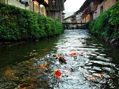 廊桥今犹在 鲤鱼溪中游——美丽宁德三天深度摄影创作团