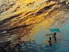 2015年霞浦滩涂摄影征集令