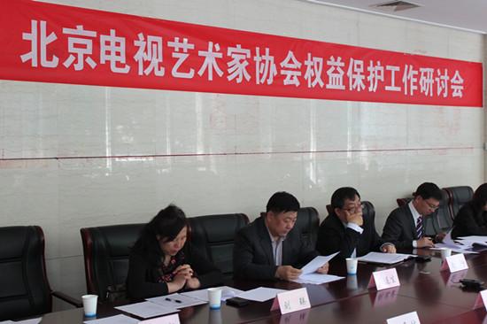 北京视协权柄爱护集会胜利举行