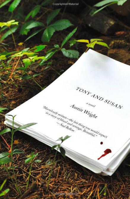 《夜步履物》改编自小说《托尼和苏姗》