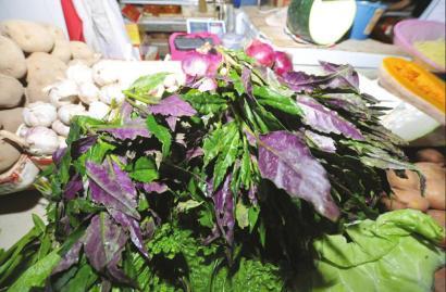 农贸市场售卖的血皮菜