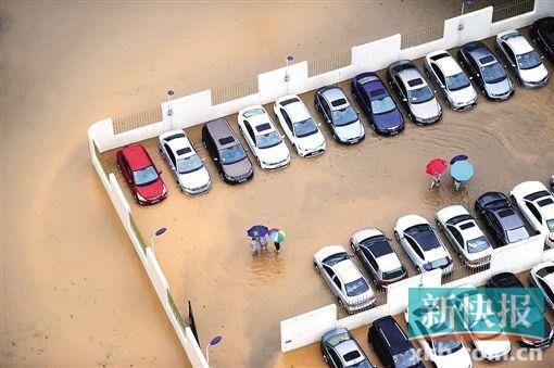5月20日下午,东莞市南城区多辆9001金沙澳门浸在水中。 CFP供图