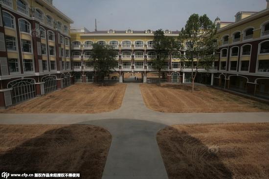 中学种麦子绿化校园