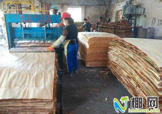 学校前面的木材加工厂