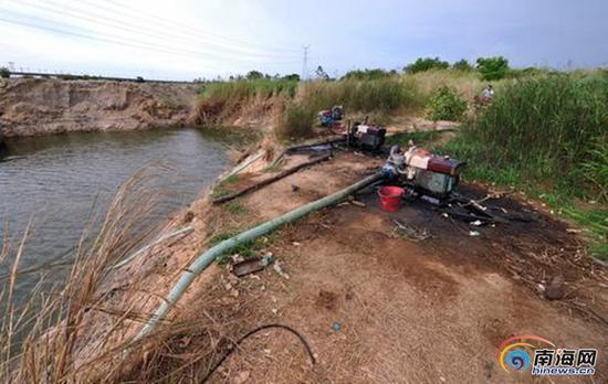 昌江海尾镇长田村村民用三台抽水机,不间断地抽取长田河低洼河段的积水来灌溉农田。