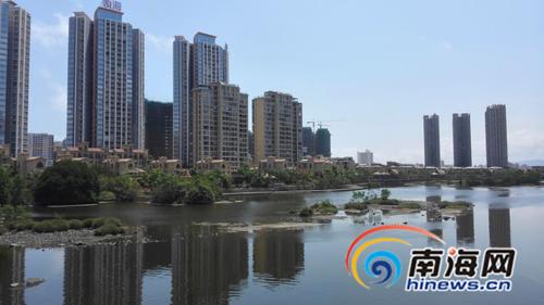 三亚河凤凰水城段红树林现状
