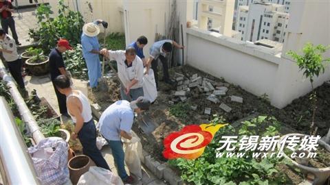 图为被铲除的空中菜园。   商报记者韩玲/摄