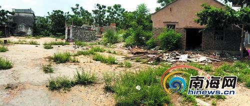 因个别村民阻挠施工,土地无法开发,里面杂草丛生。