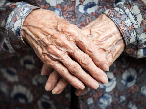 女性更长寿奥秘:雌激素影响干细胞数量与再生力