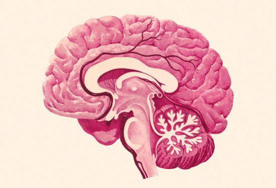 大脑空间会被用完吗?